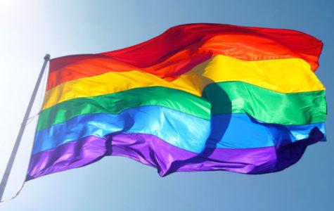 LGBT culture at South