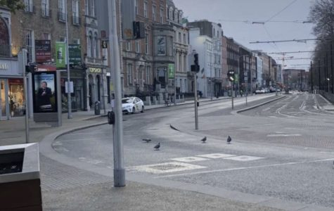 Typically, Dublin's Grafton Street is busy and packed. However, in this eerie scene the street is occupied by the common bird and the grey clouds overhead. The COVID-19 pandemic has forced many to take on precautionary and even draconian measures.